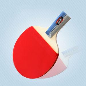 vợt bóng bàn thích hợp